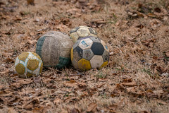 Nobody Left to Play (John Brighenti) Tags: ilce7rm2 a7rii sony alpha outdoors outside evening winter january rockville maryland twinbrook md sel70200gm lowlight 70200mm zoom brown balls soccer football volleyball grass dead ground frozen blue yellow grey leaves play toys sad lonely
