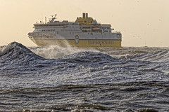 Rough Crossing (Geoff Henson) Tags: boat ship ferry sea water ocean waves plume stormy eough choppy newhaven eastsussex birds nikkor
