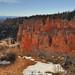Bryce Canyon - Rainbow Point Landscape