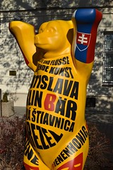 2018-10-05: Bratislava Bear (psyxjaw) Tags: bratislava slovakia central europe trip holiday friday october sun autumn