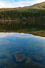Llynnau Mymbyr Reflections (Frightened Tree) Tags: reflection lake snowdonia capel curig snowdon mountain beddgelert wales north nikon d850 tamron 2470mm landscape