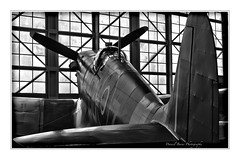 Dreaming of Flight (Daniel.Burns) Tags: fighterplane aircraft airplane aviationtechnology historic canon monochrome coolairplanes historicaircraft seattle airshows battleofbritain iconicaircraft wwii warbird supermarinespitfire supermarine spitfiremkvc spitfire