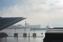 misty conditions I (Rasande Tyskar) Tags: hamburg altona portside port hafen ship ships schiff schiffe nebel mist misty haze weather diesig water wasser harbour