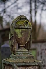 Jüdischer Friedhof Darmstadt (nordelch61) Tags: darmstadt hessen friedhof jüdisch juden grab gräber grabstätte alt verwittert moos offenblende samyang85mmf15 grave graveyard cemetery historisch sandstein skulptur