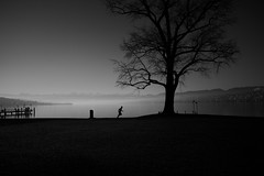 Training day (maekke) Tags: zürich chinawiese seefeld silhouette man sport jogger jogging zürichsee lake morning 35mm fujifilm x100f bw noiretblanc streetphotography ch switzerland