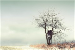Einsam (linke64) Tags: thüringen deutschland germany himmel winter landschaft natur hochsitz hügel baum einsam aoi elitegalleryaoi bestcapturesaoi