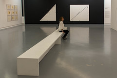 Sue and Geometry Paintings by Bernar Venet, Museum of Modern and Contemporary Art, MAMAC, Nice (Peter Cook UK) Tags: france art south mamac dazur cote modern venet bernar painting nice contemporary gallery 2019 geometry museum