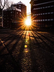A new week let's go have a good one #ThatInnerCityGlow (17-03-2018) by DillenvanderMolen #PortfolioOfColors MrOfColors.com (mrofcolorsphotography) Tags: glow city cityphotography cityphotographer thatinnercityglow canonnederland canonphotography canon canoneosr mrofcolorsphotography mrofcolors mrofcolorscom photooftheday photographer photography photo photos sunlight sun sunny sunshine colorful colour colourful colours morfcolorsphotography streetphotography street streetphotographer streets day daytime daylight contrast contrasty congrete stone portfoliofocolors portfolio portfolioofcolors portraitsofcolors journeyofcolors journey photographers flickr 500px 500pxstudio colors serie inspiremedia inspiremediagroningen