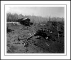 Slag Pile (rspohl17) Tags: brazeau nordegg mine alberta film largeformat 4x5 sinar kodak infrared hie hsi4143