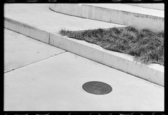 Concrete (JamieDieu) Tags: 35mmfilm blackandwhite ilford dslrscan om2