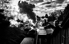 Arriving (Peter Leigh50) Tags: 8f 48624 280 freight locomotive engine steam station car sky sunshine platform building signal semaphore box cabin chimney smoke train trees track railway railroad rail great gcr gala winter fujifilm fuji xt2 mono monochrome blackandwhite bw