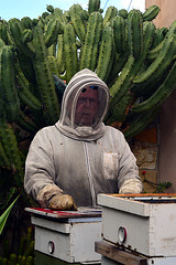 DSC_9756-61 (jjldickinson) Tags: nikond3300 107d3300 nikon1855mmf3556gvriiafsdxnikkor promaster52mmdigitalhdprotectionfilter longbeach bixbyknolls longbeachbeekeepers outreach class beeprepared insect bee honeybee apismellifera hive hiveinspection dickbarnes