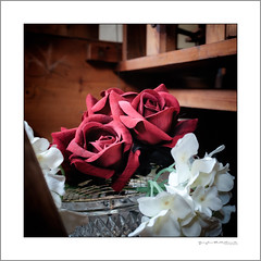 Roses are red, roses are fake (G. Postlethwaite esq.) Tags: dof devon fujix100t macro northtawton unlimitedphotos bokeh chapel closeup depthoffield fakeflowers photoborder redroses rosebowl selectivefocus square