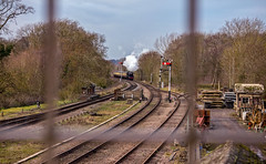 Swithland Sidings (Peter Leigh50) Tags: great central railway railroad rail train trees track transport steam signal semaphore bridge landscape locomotive engine black five 5mt 5 45305