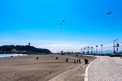 At Enoshima East Beach : 江の島東浜にて (Dakiny) Tags: 2019 spring march japan kanagawa fujisawa enoshima katasekaigan shonancoast city street people sea sky blue bluesky nikon d750