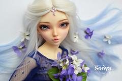 DSC_2171 (sonya_wig) Tags: fairytreewigs wig bjdwig minifeewig bjd bjdminifee minifeechloe handmadedoll bjddoll dollphoto fairyland fairylandminifee minifee chloe bjdphotographycoloringhair