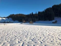 Winter 2019 bei Süderen (Martinus VI) Tags: süderen wachseldorn kanton de canton bern berne berna berner bernese schweiz suisse suiza switzerland svizzera swiss y190119 martinus6 martinus6xy martinus martinusvi