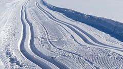 Langlaufloipe (Sanseira) Tags: bayerischer wald nationalpark schnee eis ski langlauf loipe spur