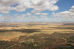 Benquerencia de la Serena ([ ͆ ◎] Bernard LIÉGEOIS) Tags: espagne españa spain estrémadure extremadura laserena benquerenciadelaserena paysage landscape