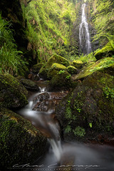 Una de mis cascadas favoritas. (Fotografias Unai Larraya) Tags: paisajes salvaje naturaleza bosque gorbea largaexposición cascadas helecho arboles primavera agua piedra