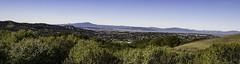 San Francisco Bay from Sobrante Ridge (T. Christensen) Tags: sobranteridge sanfranciscobay