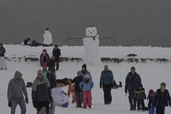 SleddingonArtHill_SAF0390 (sara97) Tags: arthill copyright©2019saraannefinke forestpark forestpark2019 missouri photobysaraannefinke saintlouis sledding snow winter winter201819