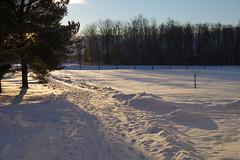 Talv (Jaan Keinaste) Tags: pentax k3 pentaxk3 eesti estonia harjumaa raevald jürialevik talv winter lumi snow