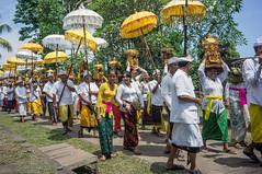 (kuuan) Tags: voigtländerheliarf4515mm manualfocus mf voigtländer 15mm aspherical f4515mm sonynex5n nex5n superwideheliar bali indonesia purapenataransasih pejeng odalan temple festival balinese ceremony procession ceremonialumbrella