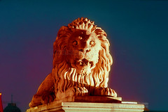 Lion Statue holding sentry at the Széchenyi Chain Bridge, Budapest (Vern Krutein) Tags: lionstatue szžchenyichainbridge chainsuspensionbridge danuberiver budapest lion statue night exterior outdoors outside nighttime art artform favorite hungary hungarian travel scenics architecture europe european structure historic cehv01p0708 széchenyichainbridge