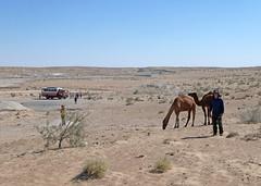 On the way to Darvaza (LeelooDallas) Tags: asia turkmenistan karakum desert landscape dana iwachow dargoman silk road trip overland september 2018