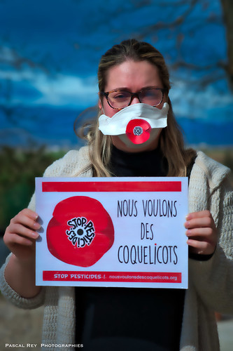 En Vallée du Rhône, nous voulons des coquelicots! Let's stop pesticides &  make it worlwide, signin'up the petition on line:    https://nousvoulonsdescoquelicots.org/l-appel/