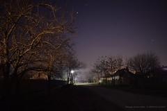 Somewhere in Kiskőrös @ Night (Hornyák - Kovács Attila) Tags: kiskőrös night éjszaka