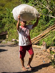 OM170541 Bali Traditional Village (Dave Curtis) Tags: bali load burden people workers 2014 em5 may omd olympus traditionalvillage