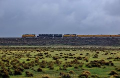 Big Boy west of Medicine Bow (rolfstumpf) Tags: usa wyoming medicinebow unionpacific overlandroute up4014 emd sd70m landscape desert rain trains bigboy steamlocomotive railway railroad