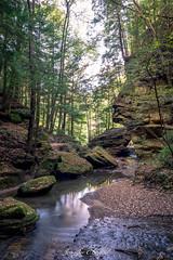 Sphinx Head (JenniferCShade) Tags: exploreohio hockinghills jennifercshade myhockinghills nature naturephotography ohio ohiostateparks oldmanscave tranquility