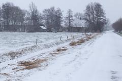 Winter in the polder (jan.vd.wolf) Tags: amersfoort hoogland utrecht nederland nl winter polder sneeuw snow cold koud farm