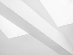 ShadowCast2.jpg (Klaus Ressmann) Tags: klaus ressmann omd em1 abstract artgallery fparis france interior lemarais spring architecture blackandwhite ceiling design flcstrart minimal softtones streetart klausressmann omdem1