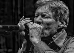 Paul Jones plays the blues (Philip L Hinton A.R.P.S.) Tags: portrait musician livemusic nikon revelationashford mono