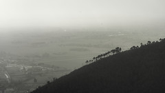 Foggy trees (ndrearu) Tags: black blackandwhite white foggy fog panorama light dawn trees outside outdoor shadow dark mount mountains pisa tuscany