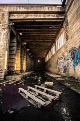 Brickyard (Denis Tassin) Tags: sun soleil brickyard briqueterie belgium belgique fleurus wangenies factory usine abandonnée abandoned
