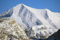 Provo Peak (arbyreed) Tags: arbyreed provopeak squawpeak snow winter cold buriedinsnow trees wasatchmountainrange