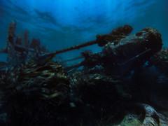 Restos del Indus IV - Quintay (evemari.luz) Tags: divingphotography oceanopacifico photosub scubadiving shipwreck underwater
