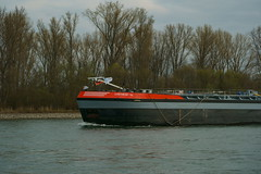 TMS SYNTHESE-14 (Lutz Blohm) Tags: tmssynthese14 tankschiff speyer gütermotorschiff binnenschifffahrt binnenschiffe rheinschifffahrt rhein sonyalpha7aiii sonyfe24105mmf4goss rheinzutal fluskilometer402
