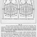 Walter Russell Chart (24)