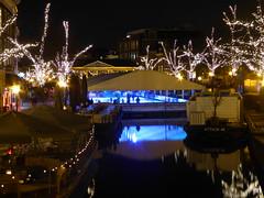 Christmas Atmosphere II (m_artijn) Tags: leiden christmas icerink skating ice blue light night atmosphere tree