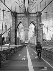 Bicycle ride (Guittoni) Tags: nyc bridge brooklyn newyork bigapple bike bw usa olympus