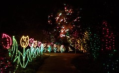 Bellingrath Magic Christmas in Lights (ciscoaguilar) Tags: alabama christmas lights theodore bellingrath