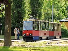 Konstal 805Na #241 + #242 (b-dziewiętnaście) Tags: konstal 805na 241 242 naukajazdy l tramwaj strasenbahn tram mzk mzkbydgoszcz bydgoszcz