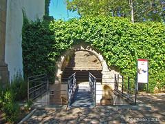 Castelo de Castelo Branco - Arco (Sofia Barão) Tags: portugal castelo branco beira baixa castle