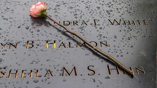 Tears at Ground Zero